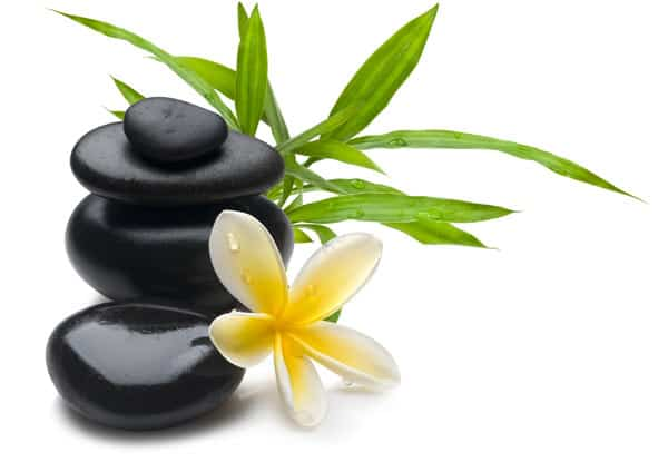 kiwi spa philosophy